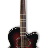 Ibanez AEL8E TRS